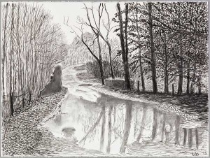 David Hockney, Woldgate, 67 February, from The Arrival of Spring in 2013 (twenty thirteen). Charcoal on paper. 22 5/8 x 30 1/4 in. © 2013 David Hockney. Photo: Richard Schmidt